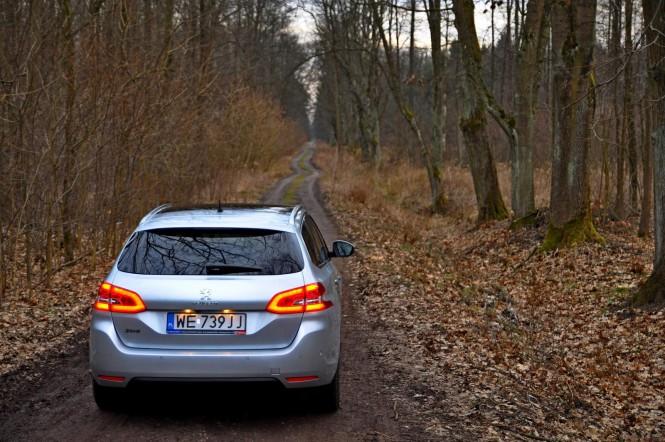Lwiątko z plecakiem: Peugeot 308SW