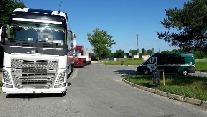 Kierowca ciężarówki dostał aż 14 mandatów na łączą kwotę blisko 8 tys. zł. Za co?