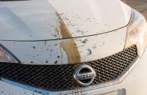 Nissan... samoczyszczący