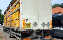 Ciężarówka przeciążona królikami