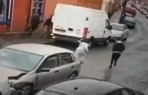 Po stłuczce Hondy z auta wyskoczyło... dziewięciu pasażerów