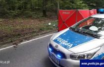 Policjanci ostrzegają przed dzikimi zwierzętami